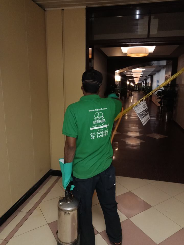 pest control services all over pakistan